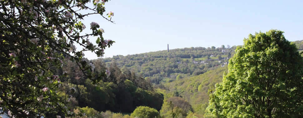 Far reaching views across the Tamar Valley